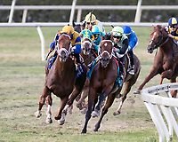 HALLANDALE BEACH, FL - MAR 31:Hi Happy (ARG) #3 (on left) trained by Todd A. Pletcher with Luis Saez in the irons vies for the lead along the final turn on the way to winning The Pan American Stakes (G2) at Gulfstream Park on March 31, 2018 in Hallandale Beach, Florida. (Photo by Bob Aaron/Eclipse Sportswire/Getty Images)