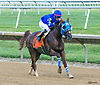 Mystical MHF winning at Delaware Park on 7/3/17