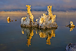 A photo of tufa towers on Mono Lake