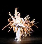 Birmingham Royal Ballet Paquita