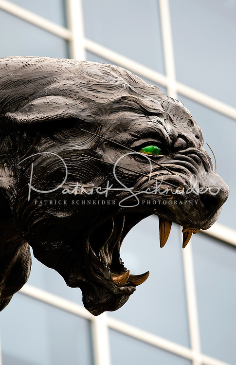 Giant panthers statues with emerald eyes and golden teeth roar outside Bank of America Stadium in Charlotte, NC. The panther statues are mascots of professional American NFL football team The Carolina Panthers represents North Carolina and South Carolina from its hometown of Charlotte, NC. The Carolina Panthers are members of the NFL's National Football Conference South Division. The Charlotte professional football team began playing in Charlotte in 1995 as an expansion team.  The Carolina Panthers play in Bank of America Stadium, formerly known as Carolinas Stadium and Ericsson Stadium.