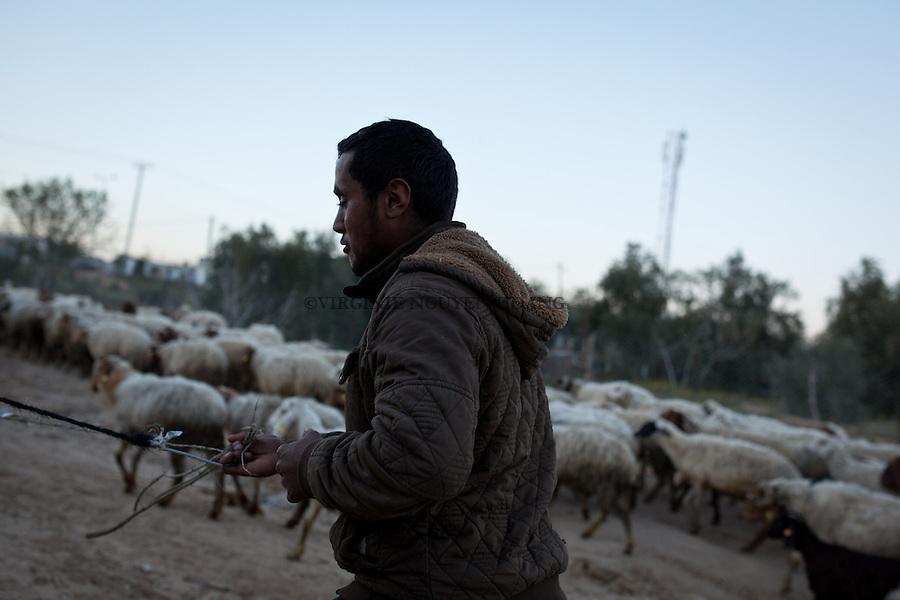 GAZA,Erez: Hassan riding the cart. <br /> <br /> GAZA, Erez: Hassan sur sa charette.