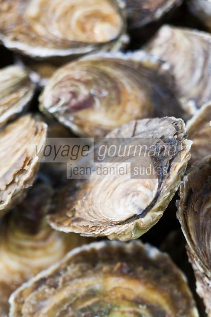 Europe/France/Bretagne/29/Finistère/ Concarneau: Huitres plates de Belon sur un étal du marché
