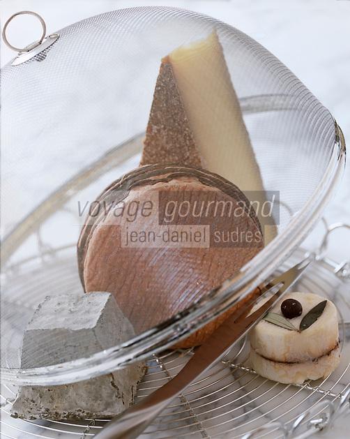 Cuisine/Gastronomie: plateau de fromage avec Livarot, Valençay…, tome et chèvre