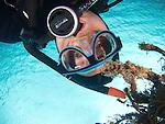 Kenting, Taiwan -- Diver.