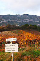 Chateau Ciceron, Ch Pech Latt, Corbieres Crus Signes, Agriculture Biologique, Chateau Pech-Latt. Near Ribaute. Les Corbieres. Languedoc. France. Europe. Vineyard.