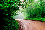 Dirt road in the Chequamegon National Forest in northern Wisconsin.