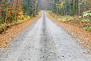 Tripoli Road in Livermore, New Hampshire USA during the autumn months.