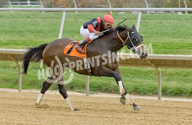 Splash Landing winning at Delaware Park on 10/27/12..
