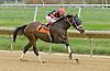 Splash Landing winning at Delaware Park on 10/27/12..