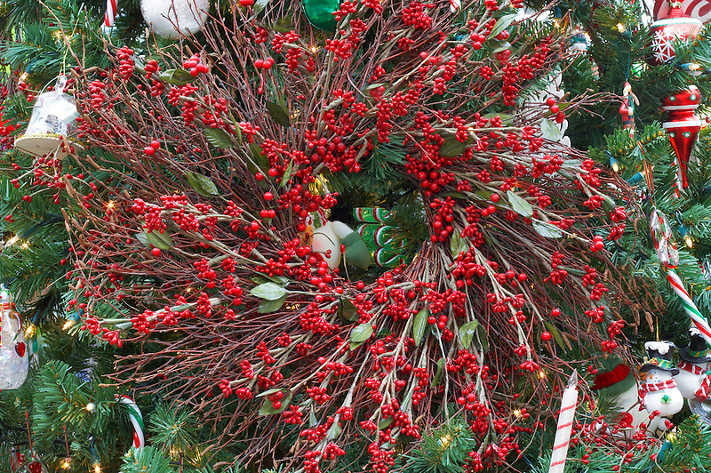 Christmas decorations on Christmas tree with wreath. Al's Nursery. Sherwood. Oregon