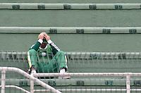 ATENÇÃO EDITOR: FOTO EMBARGADA PARA VEÍCULOS INTERNACIONAIS - SÃO PAULO, SP, 25 DE NOVEMBRO DE 2012 - CAMPEONATO BRASILEIRO - PALMEIRAS x ATLETICO GOIANIENSE: Torcida do Palmeirasdurante partida Palmeiras x Atletico Goianiense, válida pela 37ª rodada do Campeonato Brasileiro no Estádio do Pacaembú. FOTO: LEVI BIANCO - BRAZIL PHOTO PRESS