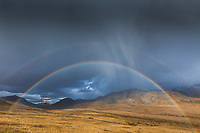 Double rainbow arcs over the autumn tundra in front of the Alaska range mountains in Denali National park, interior, Alaska.