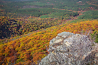 Fall in Mount Magazine State Park in Arkansas. Mount Magazine is the highest point in Arkansas at 2,753 feet above sea level.