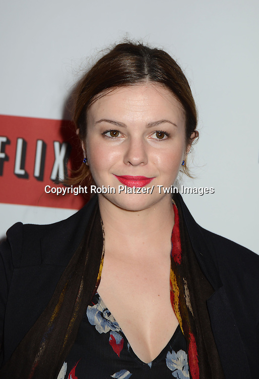 """Amber Tamblyn attends the Premiere of """"House of Cards"""" on January 30, 2013 at Alice Tully Hall at Lincoln Center in New York City. The movie is available to watch on Netflix on February 1, 2013. The show stars Kevin Spacey, Kate Mara, Robin Wright, Michael Kelly, Corey Stoll, Kristen Connoly, Sakina Jaffrey, Constance Zimmer and  Sandrine Holt."""