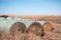 Farmland near Kearney Nebraska.