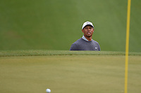Tiger Woods (USA) peeks at the results of his shot from the trap on 18 during day 4 of the WGC Dell Match Play, at the Austin Country Club, Austin, Texas, USA. 3/30/2019.<br /> Picture: Golffile | Ken Murray<br /> <br /> <br /> All photo usage must carry mandatory copyright credit (© Golffile | Ken Murray)