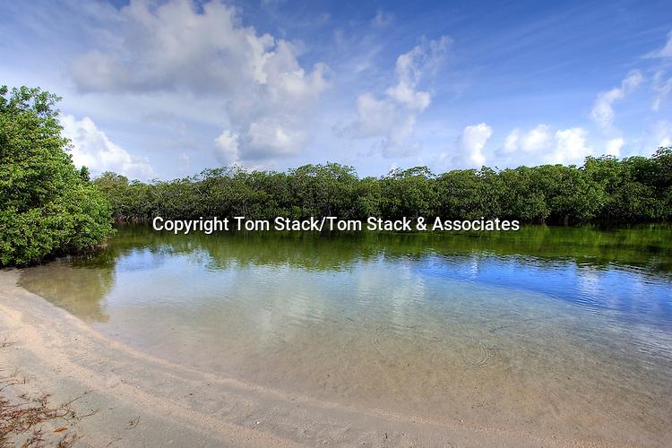 Secluded public beach, Islamorada, Florida
