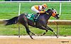 Curlin's Kid winning at Delaware Park on 7/11/16