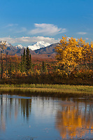 Vibrant fall colors on the tundra in the Alaska range mountains, interior, Alaska.