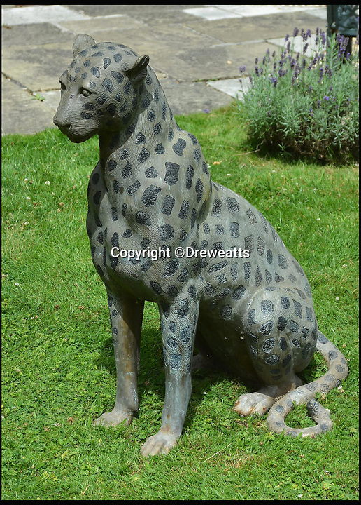 BNPS.co.uk (01202 558833)<br /> Pic: Dreweatts/BNPS<br /> <br /> A bronze cheetah estimated at &pound;900.<br /> <br /> A remarkable collection of giant bronze animals has emerged for auction and is tipped to sell for &pound;40,000.<br /> <br /> The menagerie of exotic animals includes a 7ft tall giraffe, a 9ft long elephant and a 1,800lb stag.<br /> <br /> Also included in the collection are a lion, a cheetah, a panther, a rhinoceros, a hippopotamus, a crocodile, a deer, a wild boar, a horse and various bronze birds.<br /> <br /> They were consigned by a vendor in Berkshire who collected the bronze animals with her late husband over the course of 20 years.