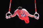 Gymnastics World Championships Mens Qualifications  25.10.15. Kristian Thomas