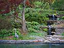 Spring in Sarah P. Duke Gardens.<br /> Heron by the Koi pond<br /> Photo by Bill Snead/Duke Photography #dukephotoaday, #dukefacilities