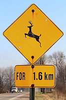 Deer Crossing Road For 1.6 Km Traffic Sign