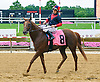 Relativism winning at Delaware Park on 7/4/16