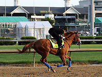 LOUISVILLE, KY -MAY 10: Kentucky Derby winner Justify, with exercise rider Humberto Gomez, galloped at Churchill Downs, Louisville, Kentucky. It was his first visit to the track since his Kentucky Derby win five days earlier. (Photo by Mary M. Meek/Eclipse Sportswire/Getty Images)