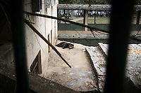 CHINA. Hubei Province. Wuhan. A Black Bear  in an enclosure in Wuhan zoo. In many of China's 'second-tier' cities, away from the modern zoos in the megacities of Beijing and Shanghai, hide a plethora of smaller unknown zoos. In these zoos, what can only be described as animal abuse is subtly taking place in the form of deprivation of light, space, sanitation and social contact with other animals. Living in awful conditions, these animals spend there days entertaining tourists who seem oblivious to the animals' plight and squalid existence. 2008.