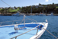 Harbour, fishing port, Eden, New South Wales. Australia, former whaling station. 201003224859..Copyright Image from Victor Patterson, 54 Dorchester Park, Belfast, United Kingdom, UK. Tel: +44 28 90661296. Email: victorpatterson@me.com; Back-up: victorpatterson@gmail.com..For my Terms and Conditions of Use go to www.victorpatterson.com and click on the appropriate tab.