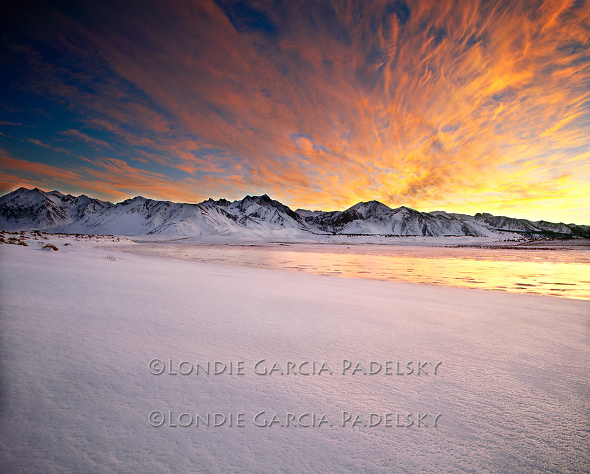 Wilderness Photography by Londie Padelsky @ Mono Arts Council Gallery | Mammoth Lakes | California | United States