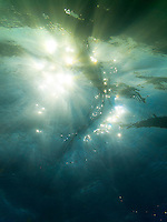 An underwater look at the sun shining through the rippling surface of the ocean off of Mahai'ula Beach, Big Island.