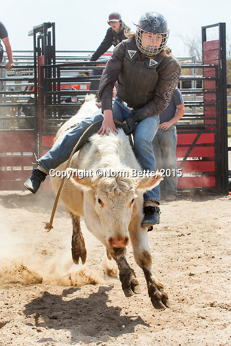 The &quot;Build A Cowboy&quot; rodeo training program for bull riders, May 2nd and 3rd, 20115 at the fairgrounds in Orangeville, Ontario, Canada<br /> <br /> PHOTOS &copy;2015, Norm Betts <br /> 416 460 8743<br /> normbetts@canadianphotographer.com