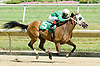 Kaweah winning at Delaware Park on 6/30/10