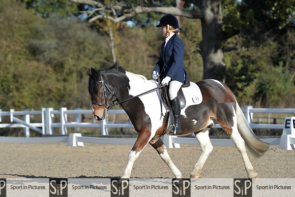 Class 2. Unaffiliated dressage. Brook Farm Training Centre. Essex. UK. 27/10/2018. ~ MANDATORY Credit Garry Bowden/Sportinpictures - NO UNAUTHORISED USE - 07837 394578
