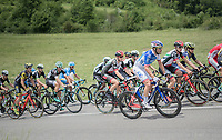 Olivier Le Gac (FRA/FDJ) moving up towards the front<br /> <br /> Stage 6: Le parc des oiseaux/Villars-Les-Dombes &rsaquo; La Motte-Servolex (147km)<br /> 69th Crit&eacute;rium du Dauphin&eacute; 2017