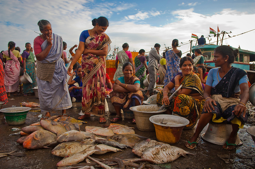 Indian women sells fish at a market in a harbour in the Nagapattinam district in the Southern Indian state of Tamil Nadu, India on the 29th of October 2010.