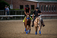 LOUISVILLE, KY - MAY 02: Solomini gallops in preparation for the Kentucky Derby at Churchill Downs on May 2, 2018 in Louisville, Kentucky. (Photo by Alex Evers/Eclipse Sportswire/Getty Images)