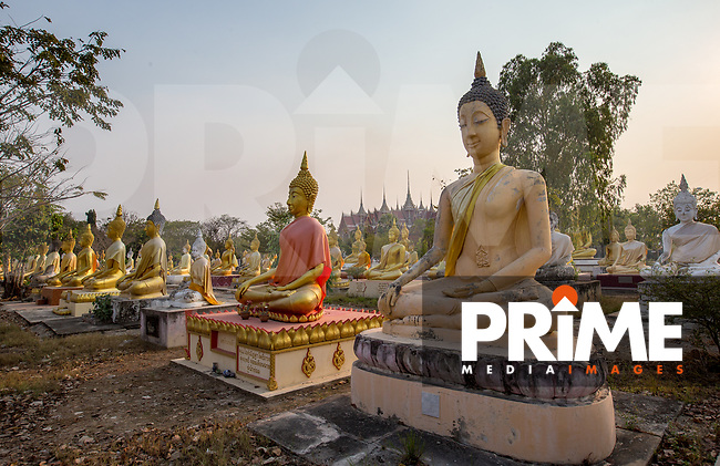 Wat Phai Rong Wua, Bang Ta Then, Song Phi Nong District, Suphan Buri, THAILAND on 13 February 2019. Photo by Andy Rowland.