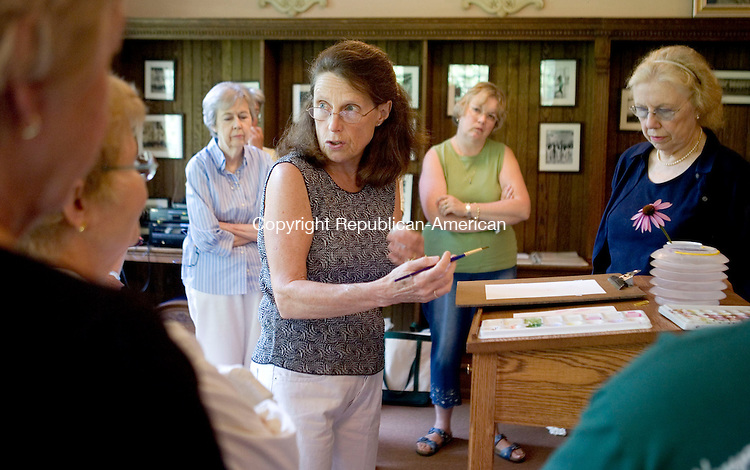WASHINGTON, CT- 19 JULY 2008- 071908JT02-<br /> Botanical artist Betsy Rogers-Knox gives watercolor tips during a workshop on painting summer perennials at the Gunn Memorial Library in Washington on Saturday. <br /> Josalee Thrift / Republican-American