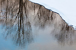 Japan, Hokkaido, winter reflections in party frozen creek