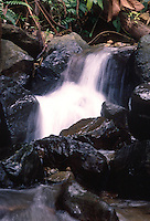 LA CALERA-COLOMBIA-22-05-2009. Cascada de agua en el Parque Chingaza. Waterfall in the Chingaza Park . (Photo: VizzorImage/Luis Ramirez)...
