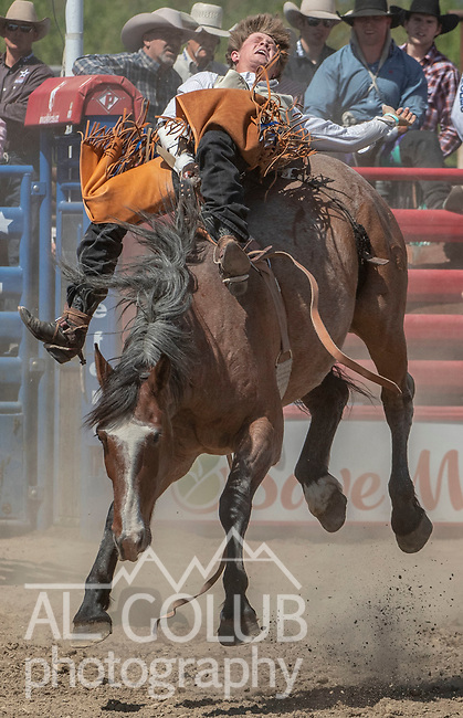 Bareback rider Jacob Lees from Pismo Beach, California at the 68th annual Oakdale Saddle Club Rodeo on Sunday, April 14, 2019.  (Al Golub/Record Photo)
