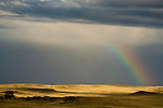 Rainbow at end of afternoon thunderstorm in the Thunder Basin National Grassland, Wyoming.