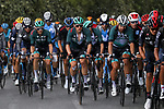 The peloton including Lukas Postlberger (AUT), Peter Sagan (SVK) and Gregor Muhlberger (AUT) Bora-Hansgrohe during Stage 3 of Tour de France 2020, running 198km from Nice to Sisteron, France. 31st August 2020.<br /> Picture: Bora-Hansgrohe/BettiniPhoto | Cyclefile<br /> All photos usage must carry mandatory copyright credit (© Cyclefile | Bora-Hansgrohe/BettiniPhoto)