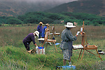 Women at an outdoor art painting class in field at Muir Beach, Marin County coast, California