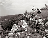 FRANCE, Arbois, chef Jean Paul Jeunet and assistant chefs Pierre and YoAnn gather fresh herbs along a cliff edge in the countryside above Arbois, Jura Wine Region (B&W)