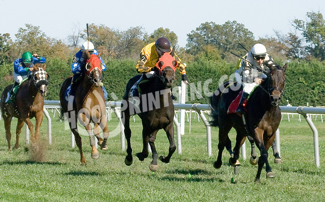 Don'twait Toolong winning at Delaware Park on 10/13/12